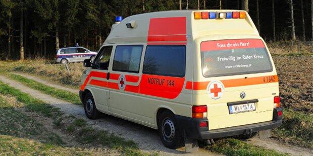 10-Jährige nach Baumsturz schwer verletzt