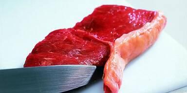 Rohe Fleisch kann Salmonellen übertragen