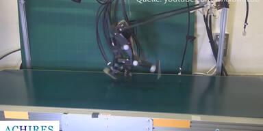 Roboter: Laufen auf 2 Beinen