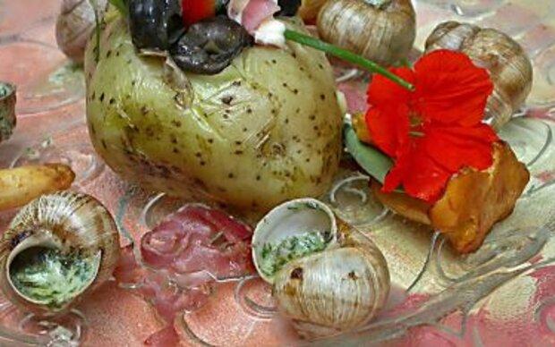 Schnecken stehen vor einem kulinarischen Comeback