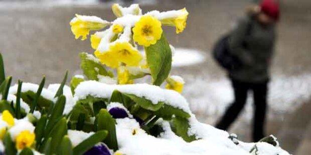 Darum dauert Winter heuer bis Mai