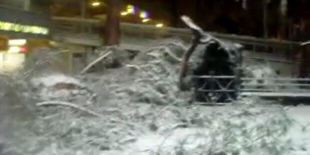 290 Menschen starben bislang an der Kälte
