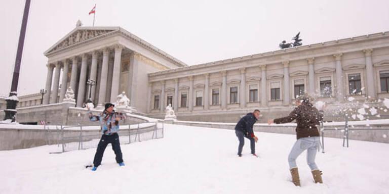 Schneefall endlich auch in Wien!