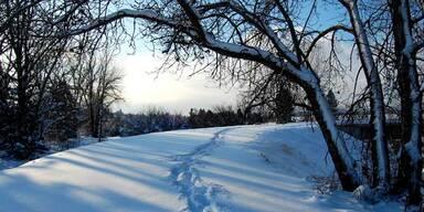Schneelandschaft teaser
