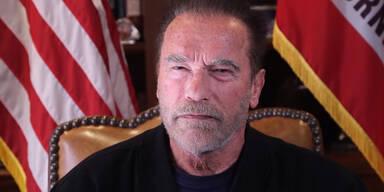 Schwarzenegger so privat wie nie: ''Schmerzhafte Erinnerung''