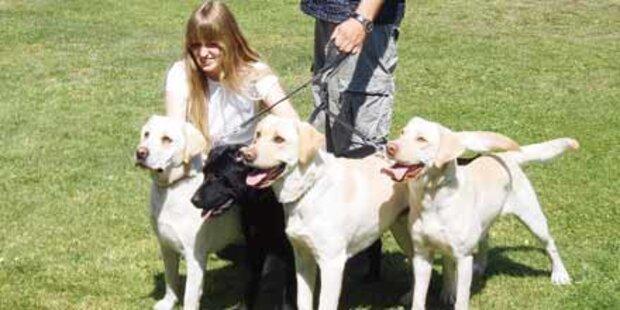 8.500 Euro Kopfgeld auf Hundehasser