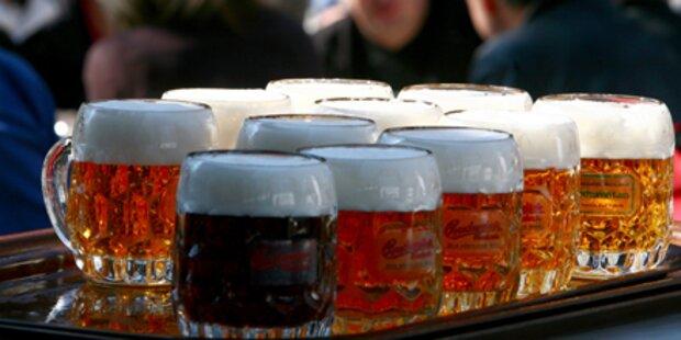 Trauner Bier soll ab Sommer erfrischen