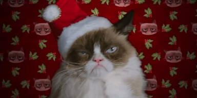 Grumpy Cat scheffelt Kohle!