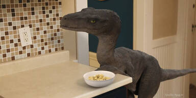 Frühstück mit einem Dinosaurier