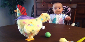 Baby flippt bei Henne aus!