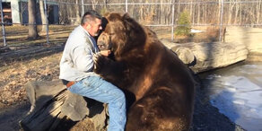 Mann kuschelt mit Bär