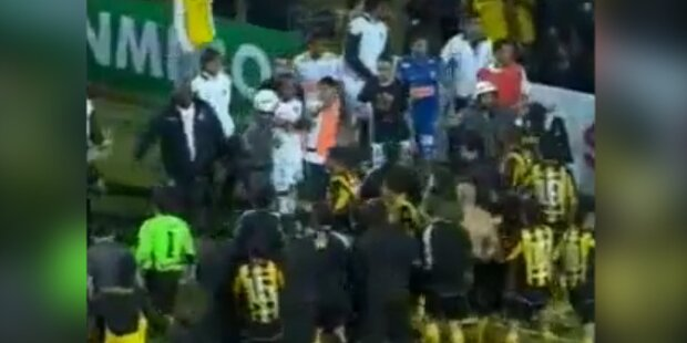 Prügel-Skandal bei Copa Libertadores