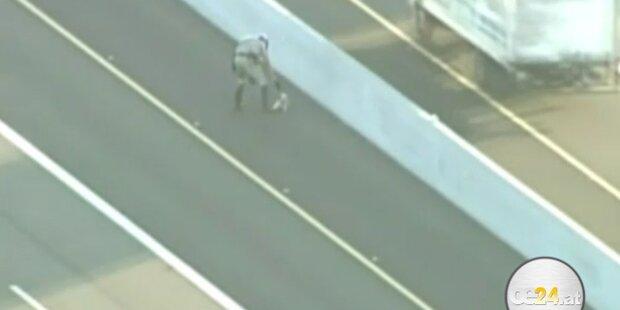 Polizei jagt Mini-Terrier über Highway