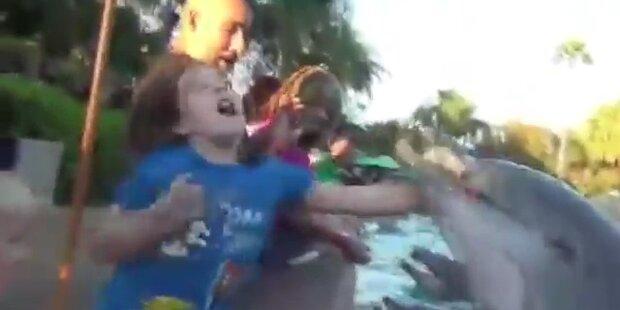 Delfin beißt junges Mädchen in die Hand