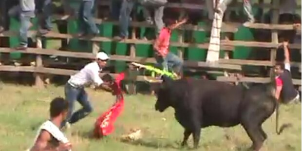 19 Verletzte bei Amateur-Stierkampf