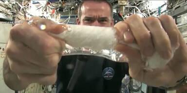 Schwerelos: Astronaut wringt Lappen aus