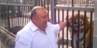 Zoo-Direktor: riskante Streicheleinheiten
