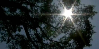 USA: Gluthitze fordert mindestens 46 Totesopfer