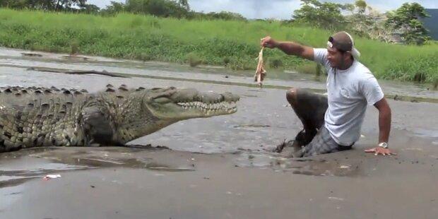 Fremdenführer wird beinahe zu Krokodil-Futter