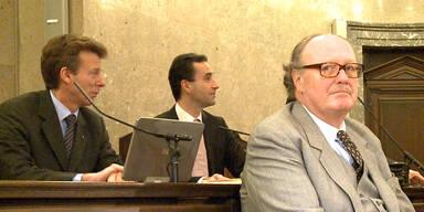 Kronzeuge gegen Graf Ali im Zeugenstand