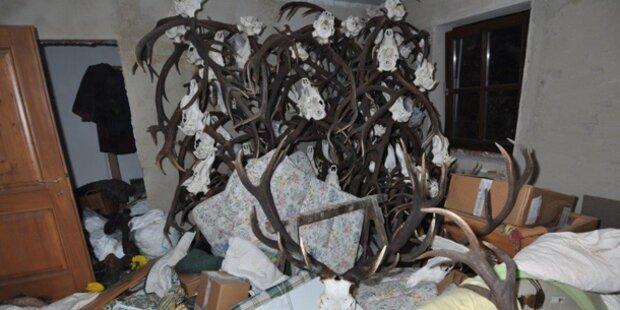 Wilderer: Verlassenschaft wurde verkauft