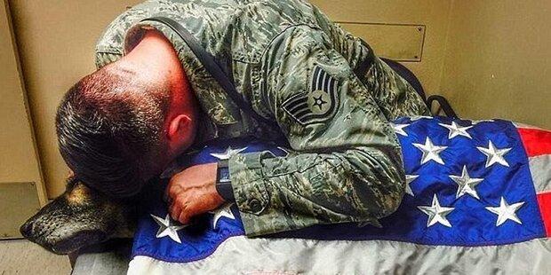 Rührend! US-Soldat verabschiedet sich von Army-Hund