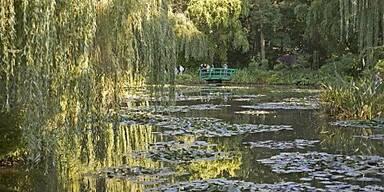 Sommer in der Normandie auf den Spuren von Monet