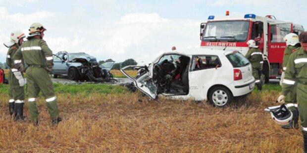 Amtstierarzt und Politiker starben Crash