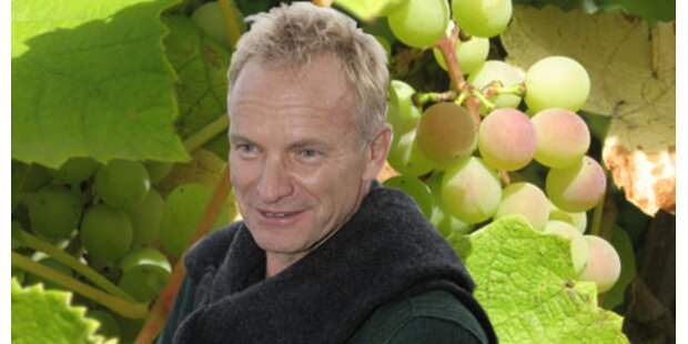 Sting baut jetzt Rock-Wein an