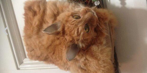 Handtasche aus echter Katze versteigert