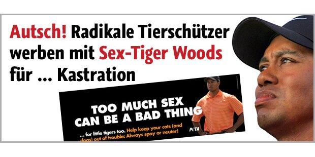 Sex-Tiger als abschreckendes Beispiel