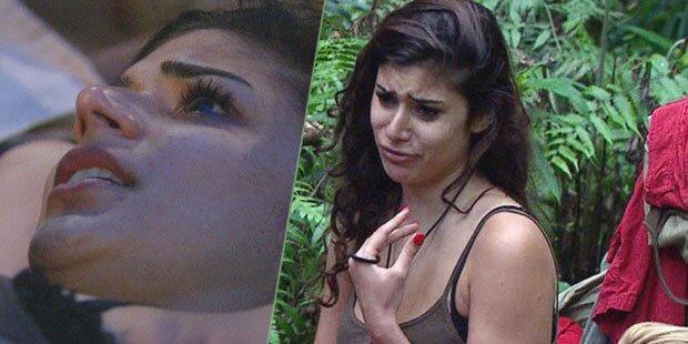 Tag 6: Verliebte Tanja heult im Dschungel