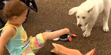 Beinloses Kind adoptiert Hund ohne Pfote