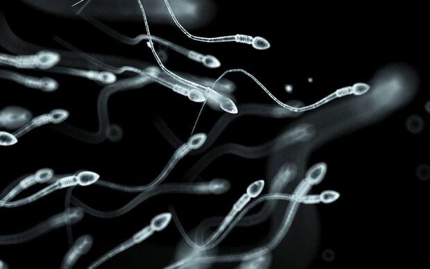 11 Dinge, die Sie über Sperma wissen sollten