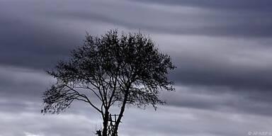 Trübe Gedanken oft grau eingefärbt