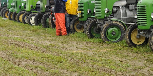 Prozess um Traktordiebstähle: Serbe geständig