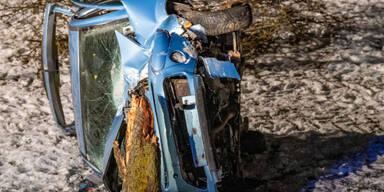 """Alkolenker """"fällte"""" Baum bei Verkehrsunfall"""