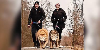 Zwei Huskys in Zwinger mit Wurst vergiftet