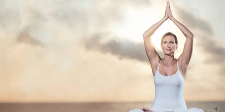 Neuer Trend: Yogan leben