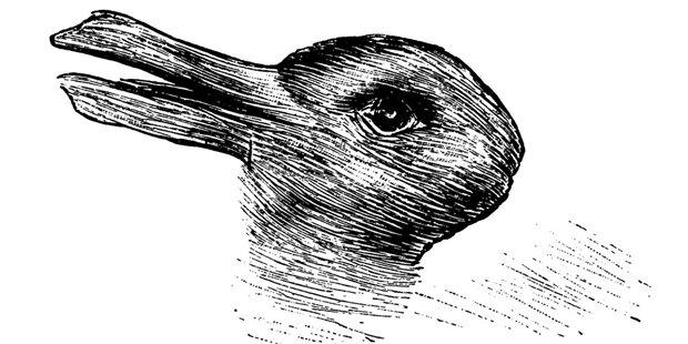 Ente oder Hase? Welches Tier sehen Sie?