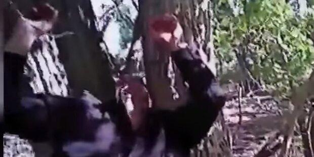 Schock-Video: Mann wurde an Baum genagelt