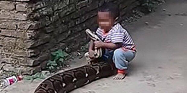 Kleinkind spielt mit Riesen-Python – seine Eltern lachen