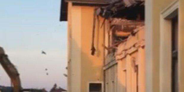 Wegen Schwalben: ÖBB stoppen Haus-Abriss