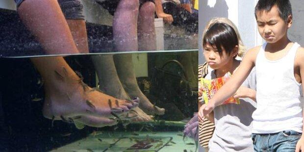 Jolie schickt Söhne zur Fischpediküre