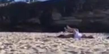 Pärchen beim Strand-Quickie erwischt