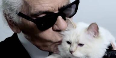 Lagerfeld: Musen & Katze erben seine 400 Millionen