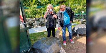Urlaub in Kärnten: Lugner im Zoo: Was ihn mit der Riesen-Schildkröte verbindet