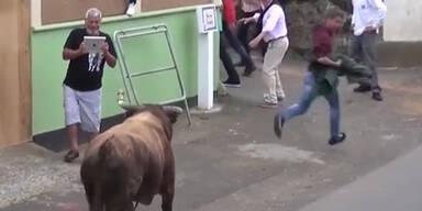 Mann filmt Stier mit iPad – die Rache kommt sofort