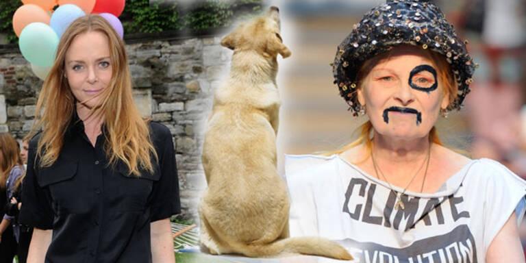 McCartney, Westwood und Co designen für Hunde