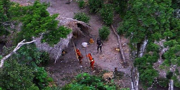 20 isolierte Ureinwohner grausam ermordet